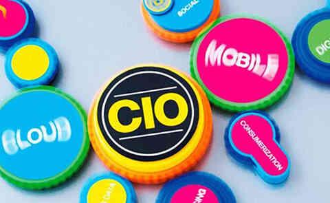 CIO是什么意思?CIO构建的职能组织