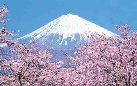 日本富士山是私人的,你知道吗?