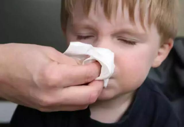 孩子经常流鼻血,是因为干燥还是患上白血病?医生终于说出大实话