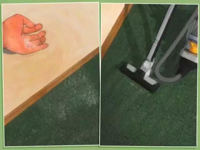 如果发现家中有跳蚤,只需这样做,跳蚤就通通不见了!